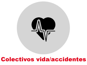 Vida/accidentes